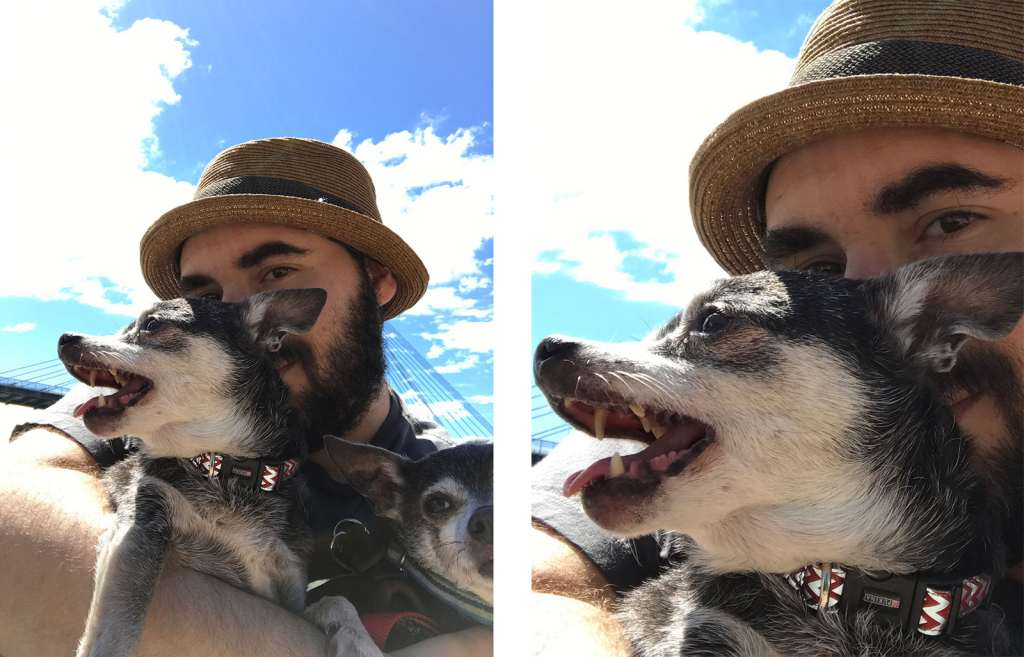 The 7 megapixel selfie camera in daylight on the iPhone 7. Full image on the left, 100 percent crop on the right.