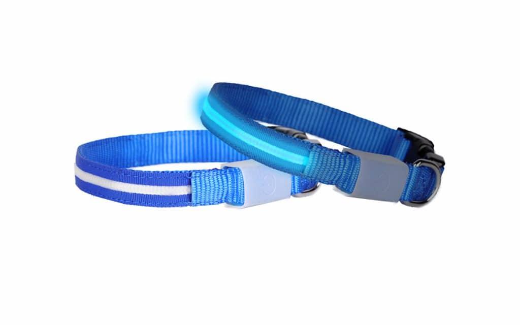 Doglite LED collar