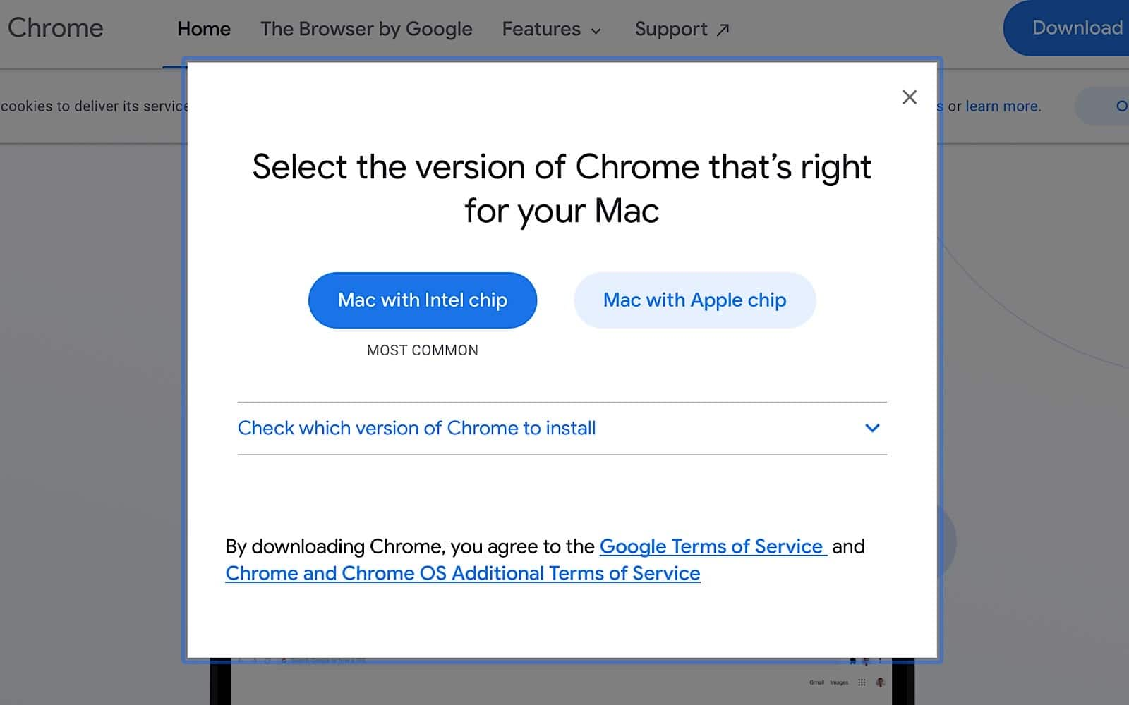 Google Chrome download selection for Intel and Apple Silicon
